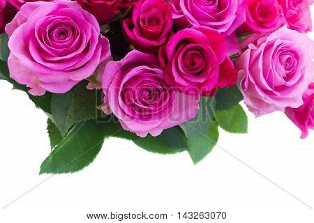 bouquet of pink and magenta roses with leaves closeup border isolated on white background