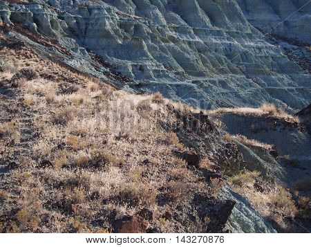 Colored layers on a cliff side at the John Day Fossil Beds in Oregon.