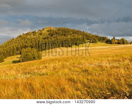 Green forested conical hill at sunset time in Jizera Mountains, Jizerka village and Bukovec Mountain, Czech Republic