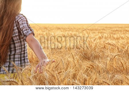 Woman touching wheat on a field