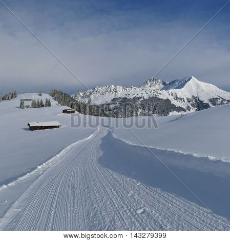 Idyllic winter landscape in Gstaad. Mt Lauenenhorn. Winter hiking trail on top of Mt Wispile.