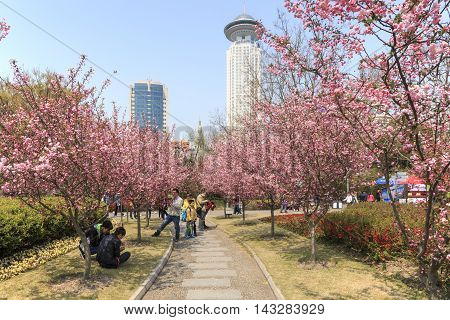 Shanghai China - March 26 2016: Tourists walking in People's Park one of the busiest in Shanghai.