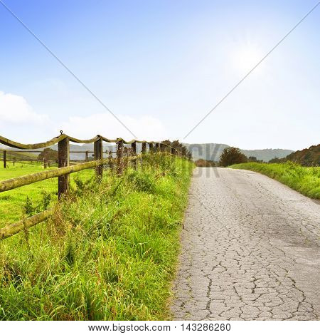 Idyllic country road through fields and paddock with wooden fence.