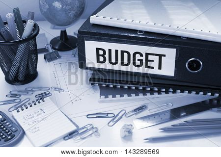 Budget financial concept with file in office