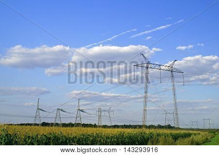 High voltage transmission powerline in the corn field