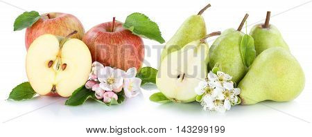 Apple And Pear Apples Pears Red Green Fruits Slice Isolated On White