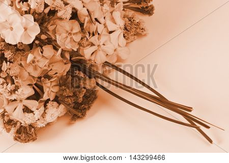 Sepia photo about a beautiful retro bouquet.