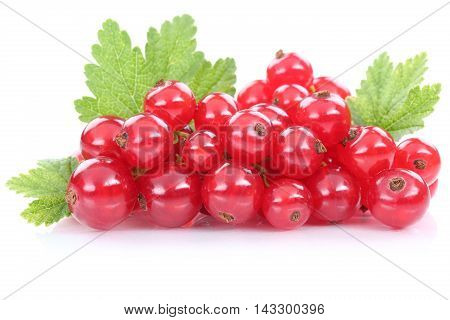 Red Currant Currants Berries Fresh Fruits Fruit Isolated On White