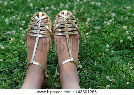 Woman legs in sandals in the grass. Concept of summer relax and happiness