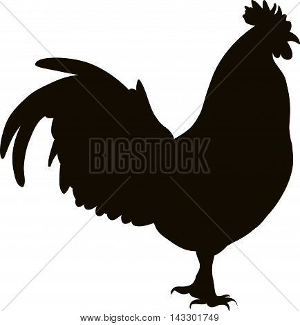 drawing of a black silhouette of a cock in profile on a white background
