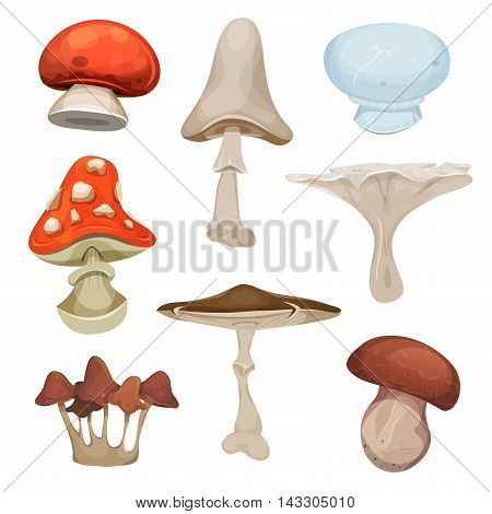 Illustration of a cartoon set of various species of mushrooms with ceps boletus and amanita