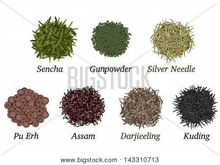 Set of different types of tea poured slide on a white background