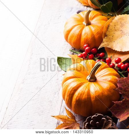 Autumn old wood background with pumpkin, pine cone, berries, yellow leaves and rowan. Selective focus. With copy space.
