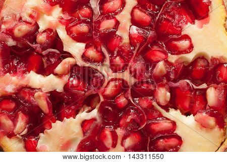 Pomegranate. Food Background
