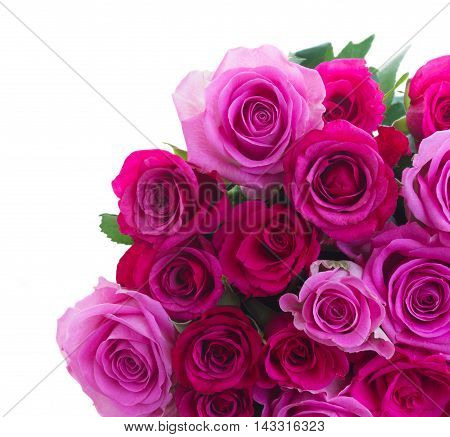 bunch of pink and magenta roses isolated on white background