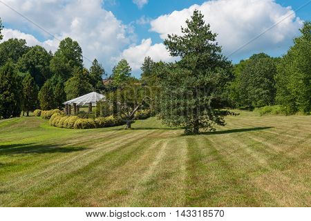 Expansive garden on a warm summer morning
