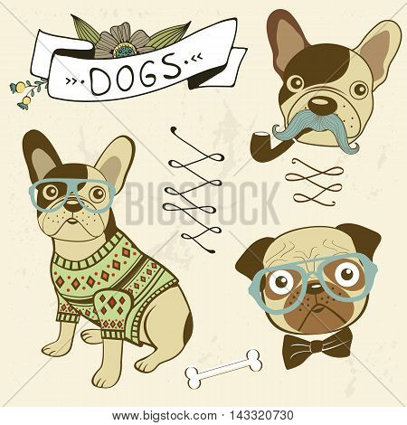 Dogs collection. Colofrul hand drawn illustration in vector format