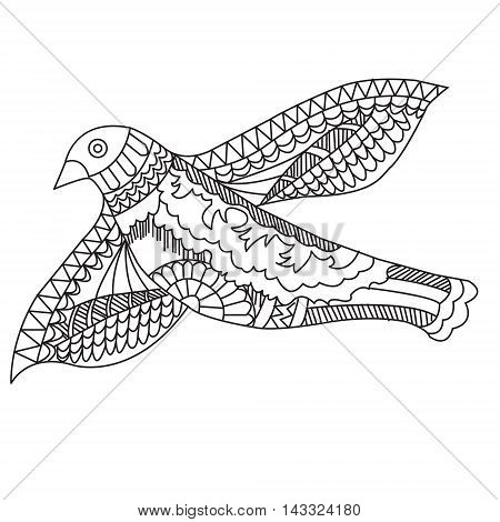 Doodle drawing flying birds vector illustration on a white background