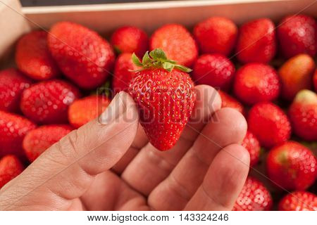 Strawberries, Food Background