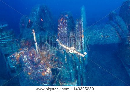Remaing of Ship wreck near Paphos Cyprus