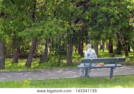 Senior gentleman sitting on the bench in park
