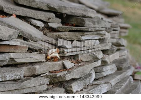 Old grey slabs of stone as a wall supporting the sloped lawn