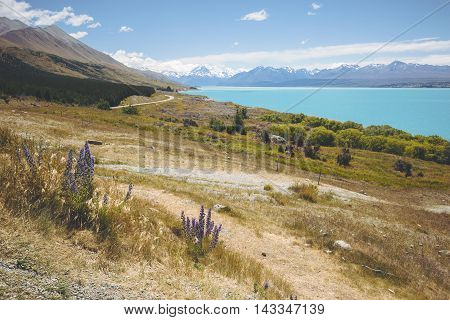 Mount cook viewpoint with Lake Pukaki and the road leading to Mount Cook Village, New Zealand