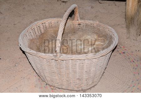Basket filled with hemp fiber raw material from the hemp plant produced.