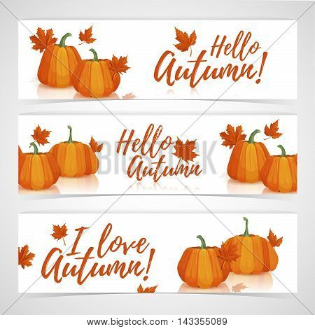Banner design template Hello autumn. Set of designs horizontal banners with the decor of pumpkins and autumn leaves. Logo hello autumn. Symbol I love autumn. Vector illustration