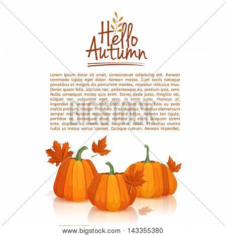 Banner design template Hello autumn. poster design with the decor of pumpkins and autumn leaves. Logo, icon, symbol hello autumn. Space for your text. Vector