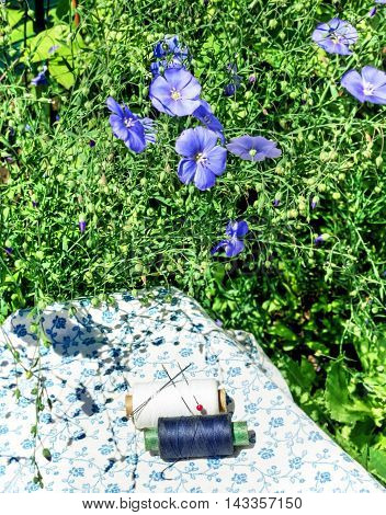 Black and white spools of thread and flowers of flax at sunny summer day