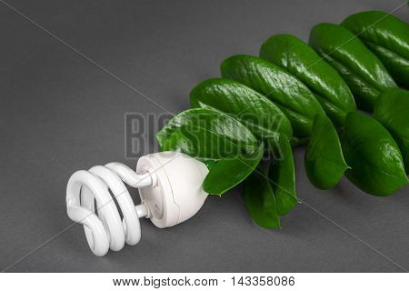 Led Lamp With Green Leaf, Eco Energy Concept, Close Up. Light Bulb On Grey Background. Saving  And E