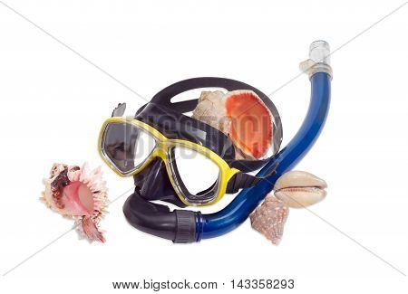 Black and yellow diving mask with blue snorkel and several different sea shells on a light background