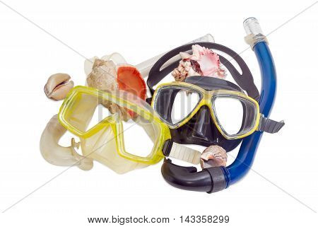 Two different diving masks with snorkels and several different sea shells on a light background