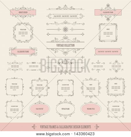 Calligraphic design elements isolated on beige background.
