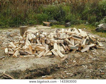 Pile of small logs lying on forest path