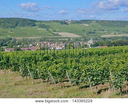 Wine Village of Grosswinternheim in Rheinhessen near Ingelheim,Rhineland-Palatinate,Germany