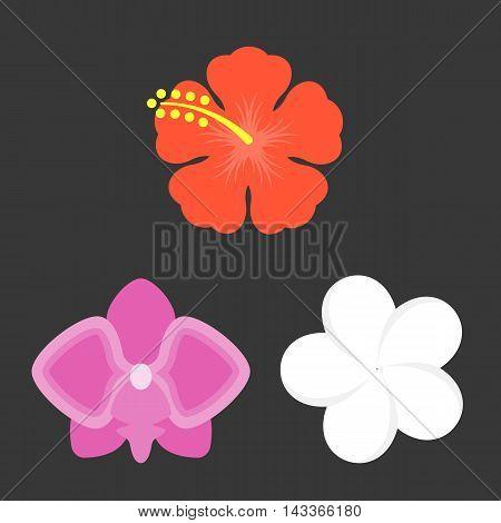 Vector flower icons set, flat design on black background