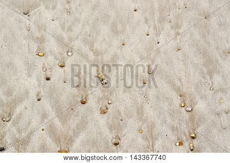 full frame abstract wet beach detail seen in Brittany France