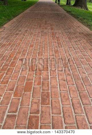 Long Red Brick Pathway through grassy park