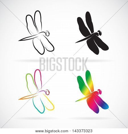 Vector group of dragonfly on white background
