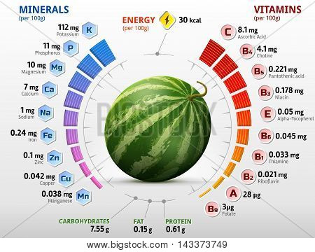 Vitamins and minerals of watermelon fruit. Infographics about nutrients in raw melon. Qualitative vector illustration for watermelon, vitamins, fruits, agriculture, health food, nutrients, diet, etc