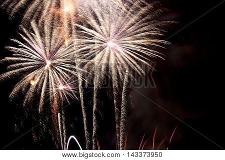 Three colorful  palm-like fireworks at the night