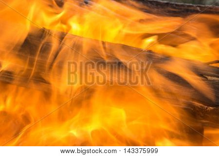 Beautiful texture of burning flame of fire