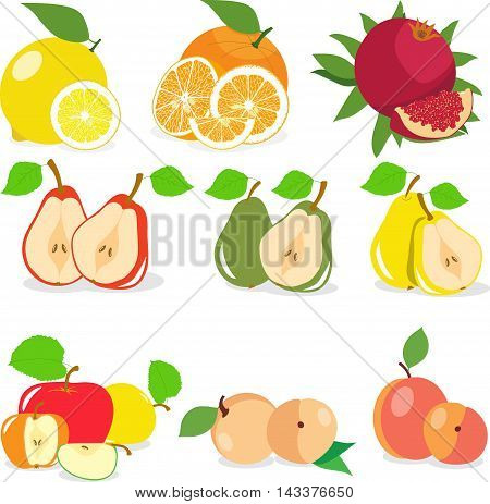 Set of fruits, lemon, apple, orange, pomegranate, pear, apricot, peach, vector illustration.
