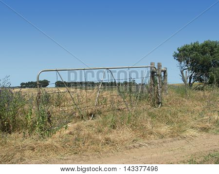 Rustic Old Farm Gate, Surrounded By Weeds And Grass