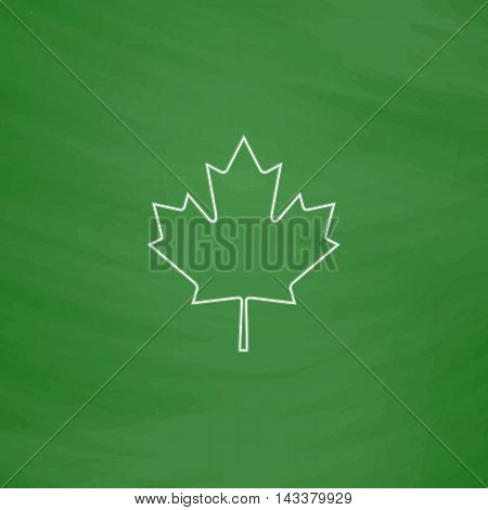 Canadian Leaf Outline vector icon. Imitation draw with white chalk on green chalkboard. Flat Pictogram and School board background. Illustration symbol