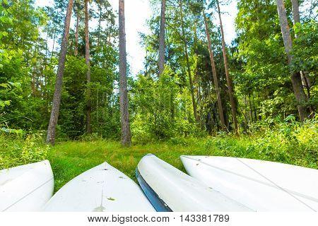 Summer Forest Landscape With Overturned Kayaks
