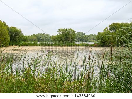 photography of a small lake seen in Brittany france