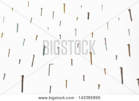 Side View Of Many Wood Screws Arranged On White